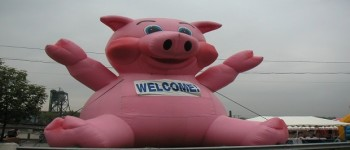 """Cut This, Go Home:   Eliminate Local, """"Pork"""" Projects From State Budget"""